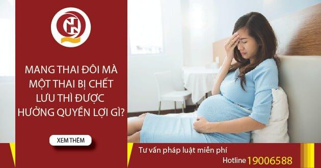 Mang thai đôi mà một thai bị chết lưu thì được hưởng quyền lợi