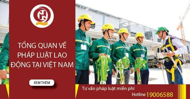 Tổng quan lao động Việt nam